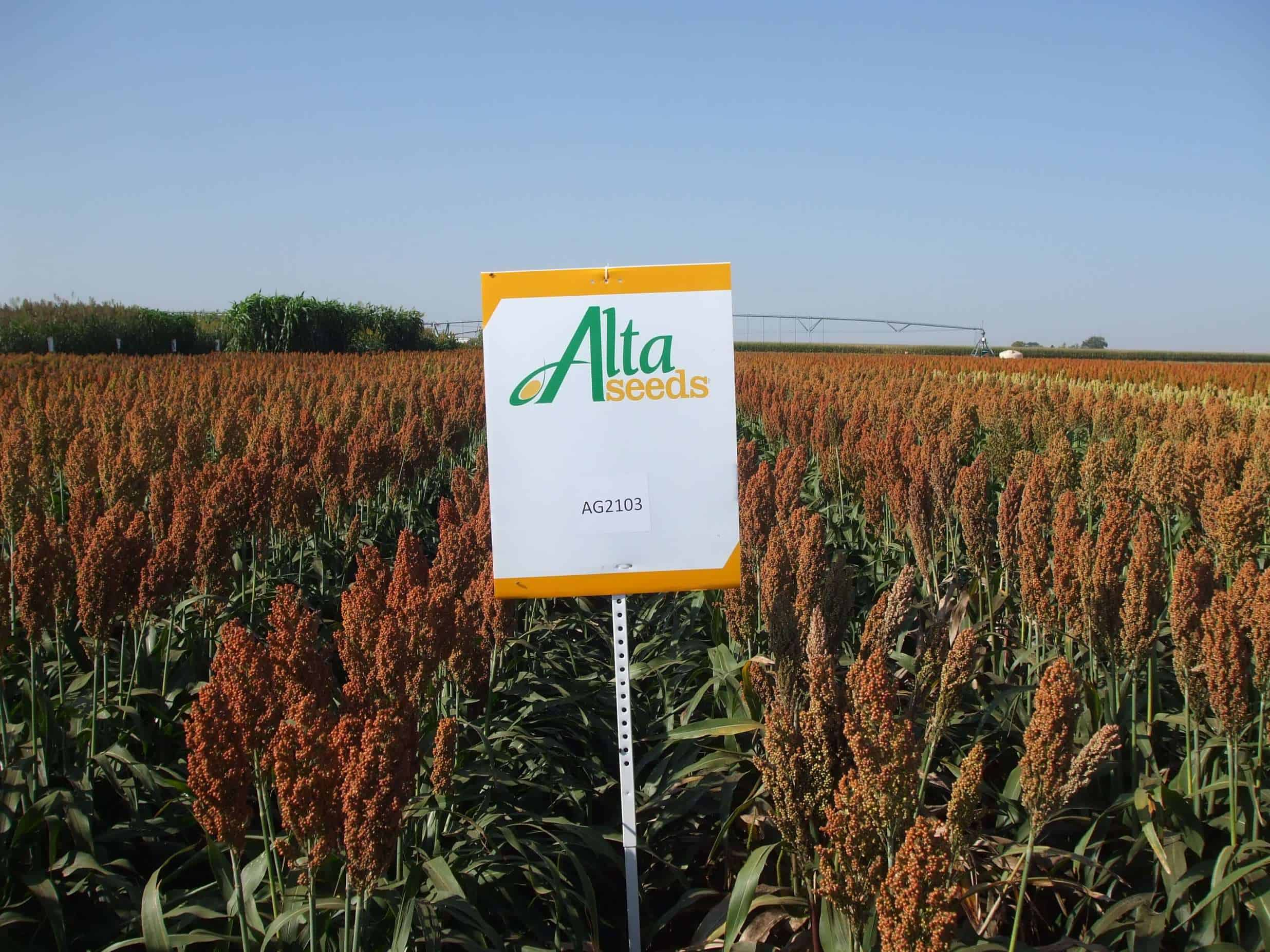 Sign next to crops