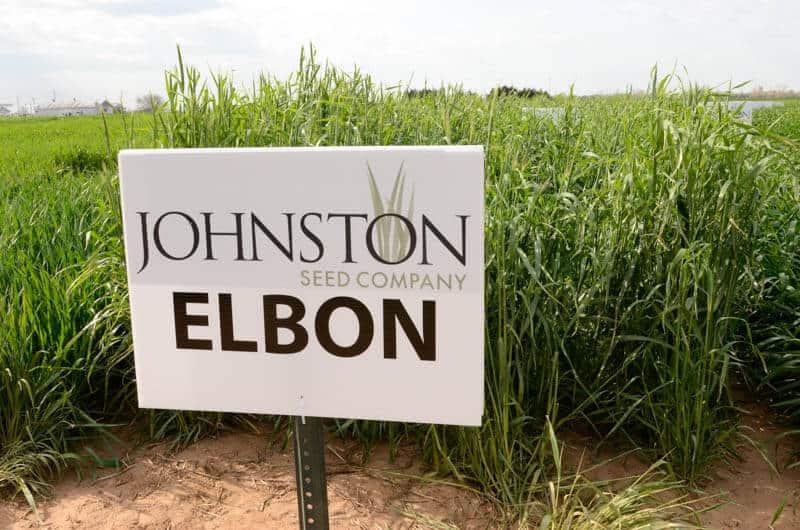 Sign next to Elbon plants