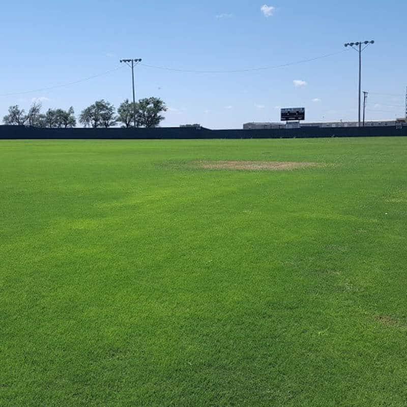 Jubilee Bermudagrass sports field
