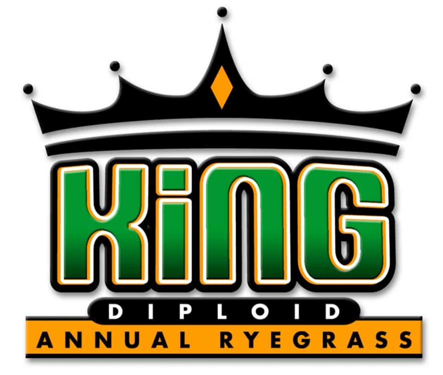 King annual ryegrass logo