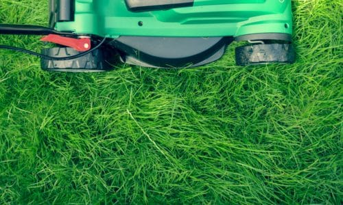 Mower cutting thick grass