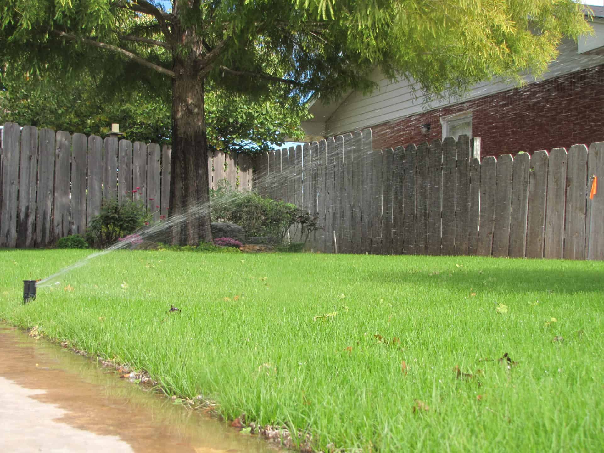 Grass being watered by in-ground sprinkler